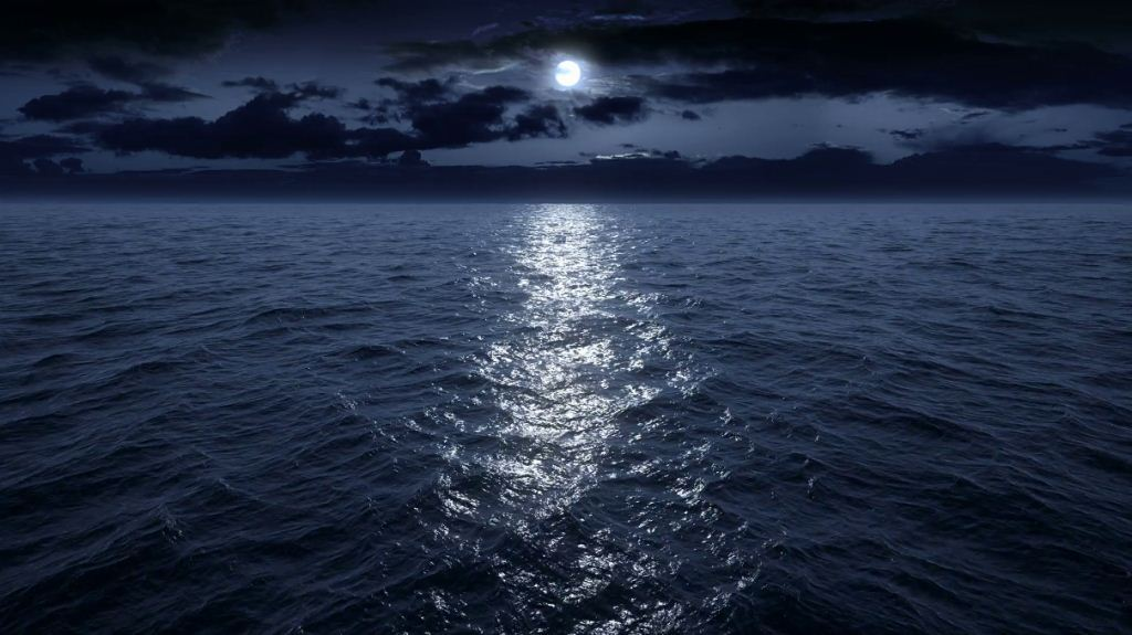 The ocean is a strange place after dark